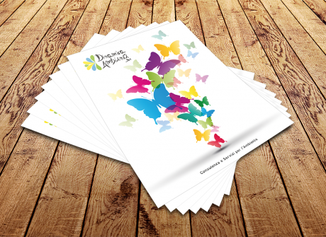 Leaflet Dinamica Ambiente